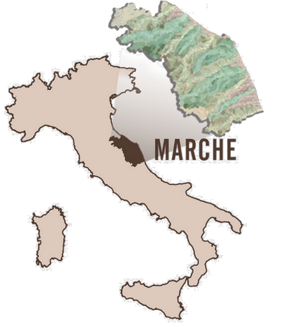 Marche_IT  map